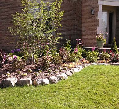 Top-Rated Landscape Company Plymouth MI - Squeals Landscaping - image-content-front-yard
