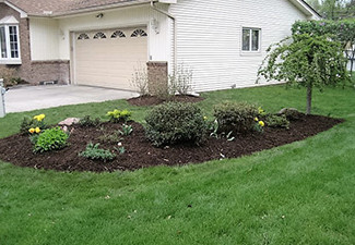Top-Rated Landscape Company Plymouth MI - Squeals Landscaping - landscaping-2-plant-area